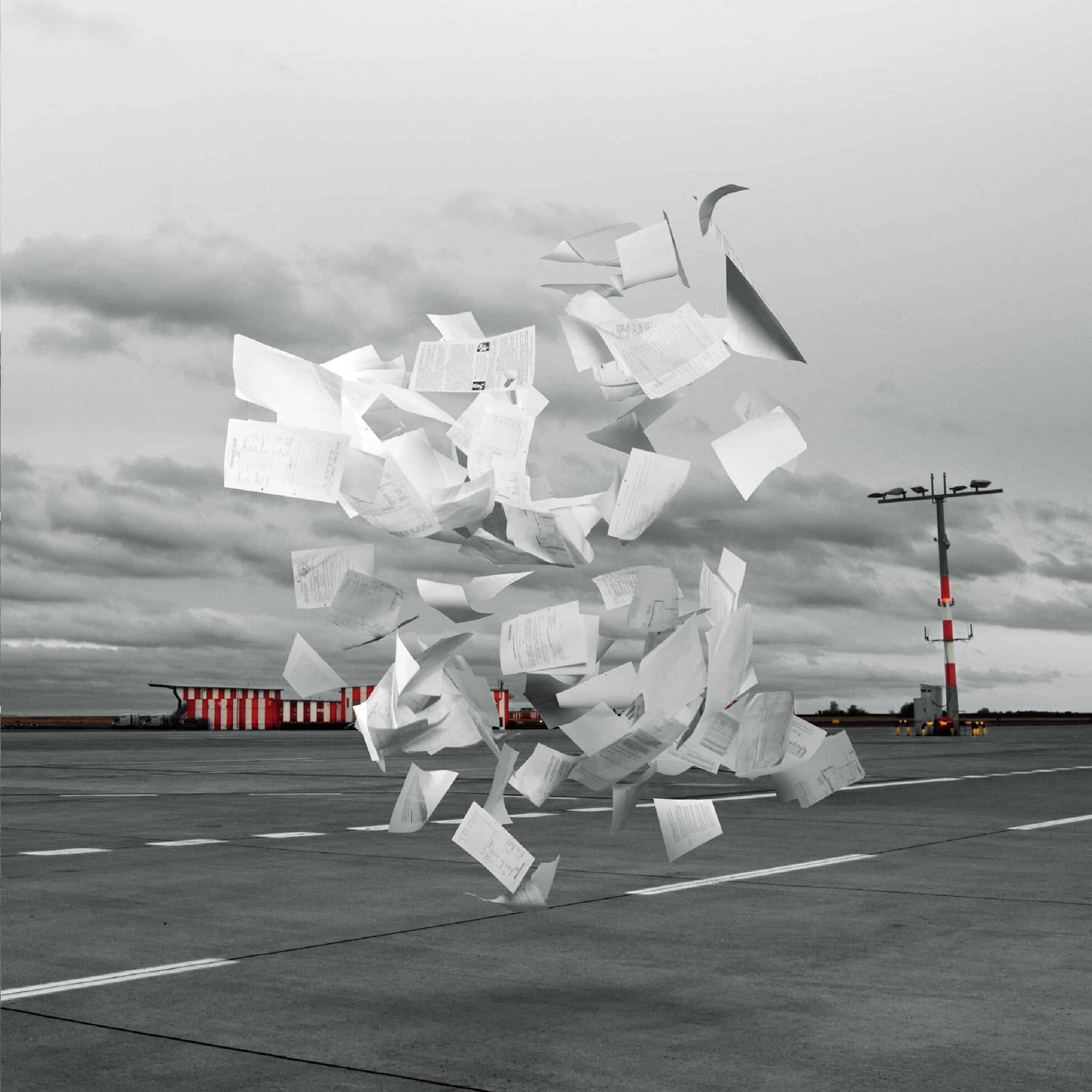 WHITE ASH – Crowds(7inch Single Record)